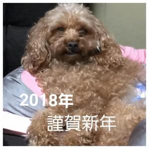 2018-01-01_23.36.52